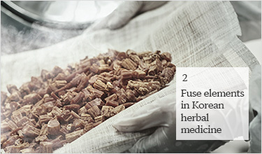 2. Fuse elements in Korean herbal medicine