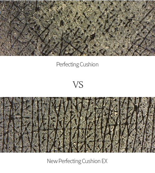 Perfecting Cushion VS NEW Perfecting Cushion EX