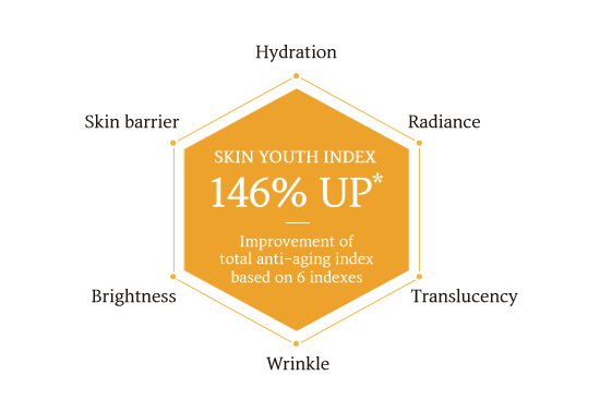 Total anti-aging index that intuitively shows Sulwhasoo's skin improvement Based on 6 indexes of Hydration / Radiance / Translucency / Wrinkle reduction / Brightness / Skin barrier